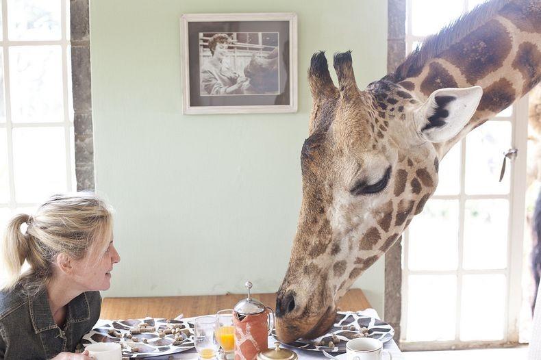 Sharing breakfast