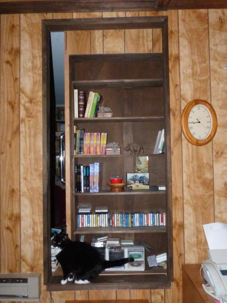 library door with cat