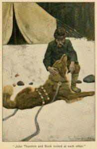 Call of the Wild's Buck illustration